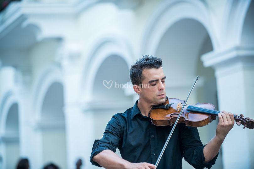 Antton Violinist