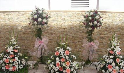 Flores del Sur 1
