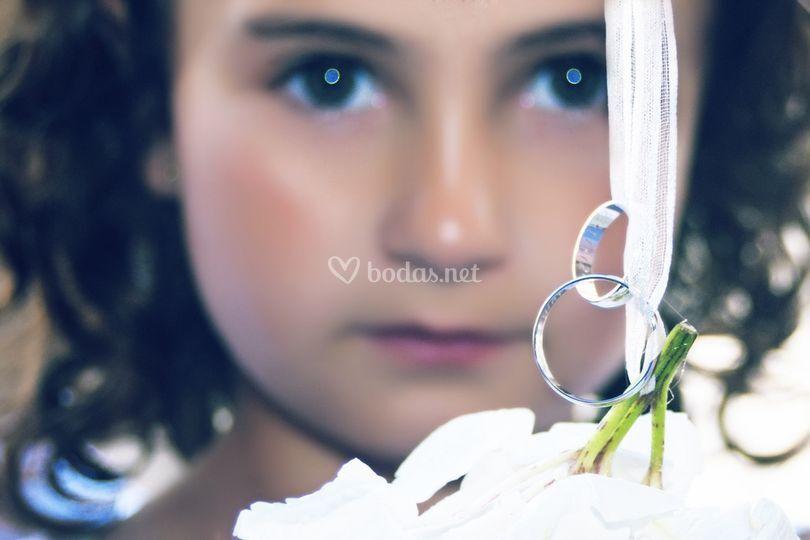 ©Bodapro