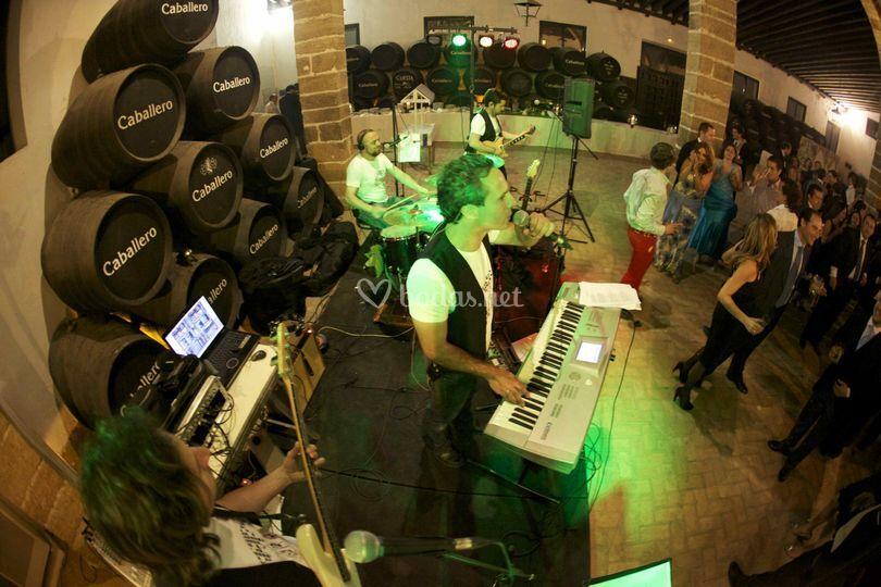 Orquesta de bodas Retroversión