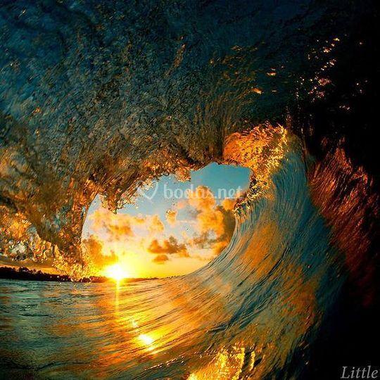 Ola en Hawai