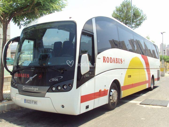 Bus 55 pax