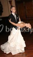 Bailes elegantes