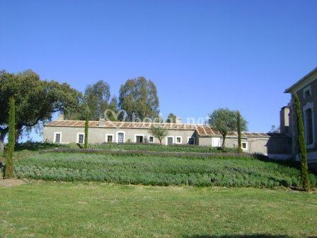 Palacio vista