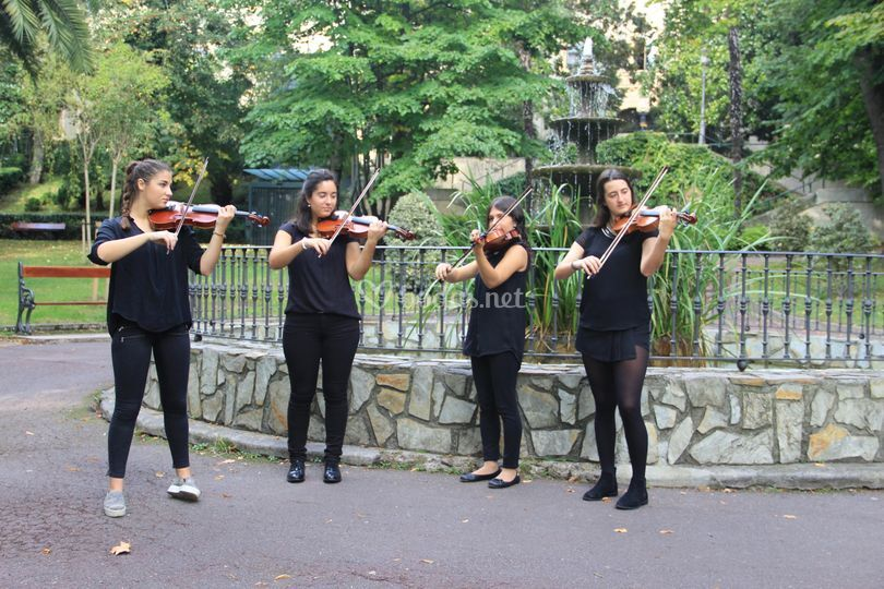 Cuarteto de violines