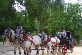 Jose Atalaya - Coches de caballos