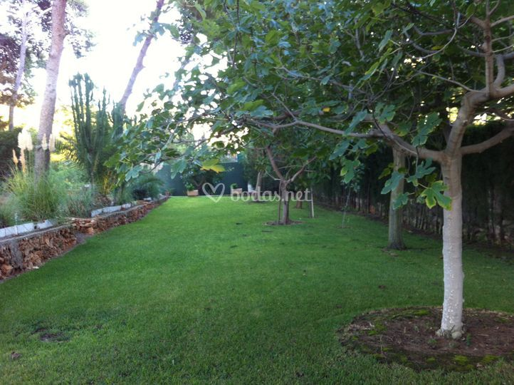 Finca la mezquida for Asociacion pinar jardin