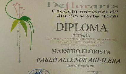 Pablo Allende - Maestro Florista