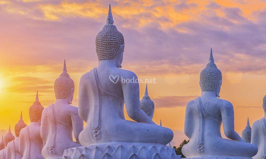 Ayutthaya (Thailandia)