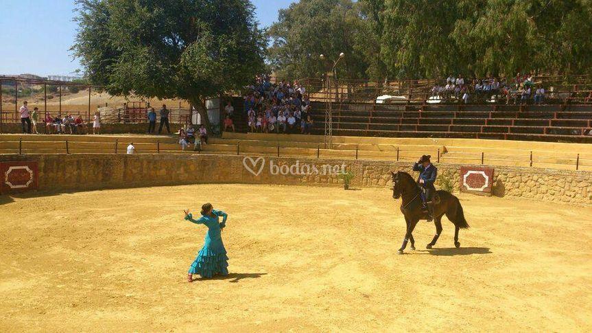 Plaza de toros-Boda