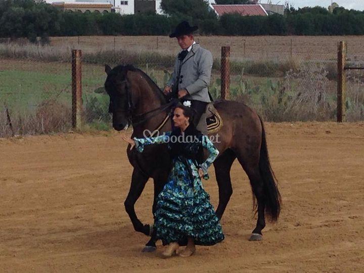 Baile de Sevillana