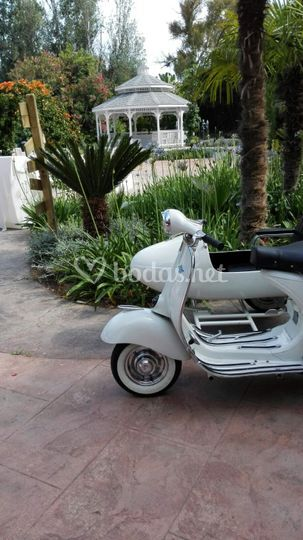 Sidecar vintage