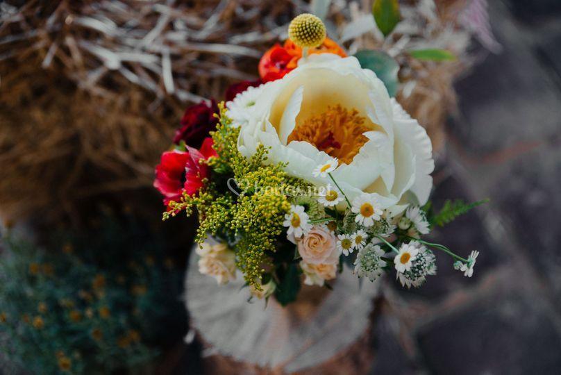 Flores espectaculares