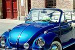 Escarabajo en Madrid