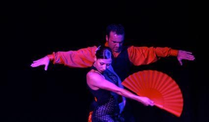 Flamenco Project 1