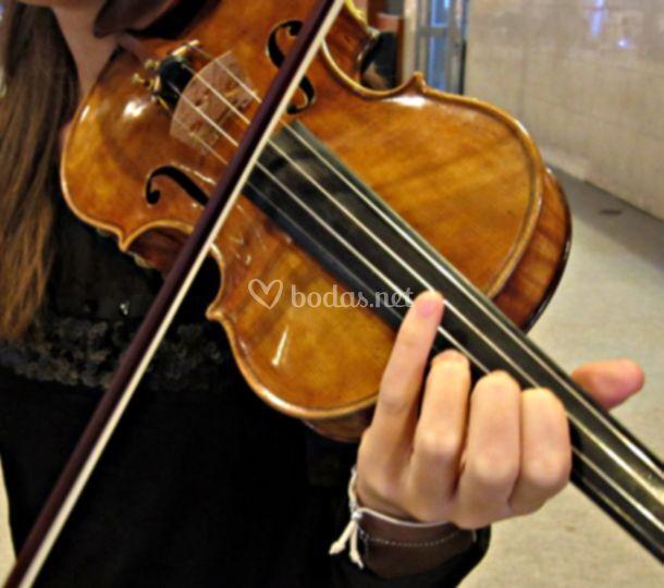 Nuestra violinista