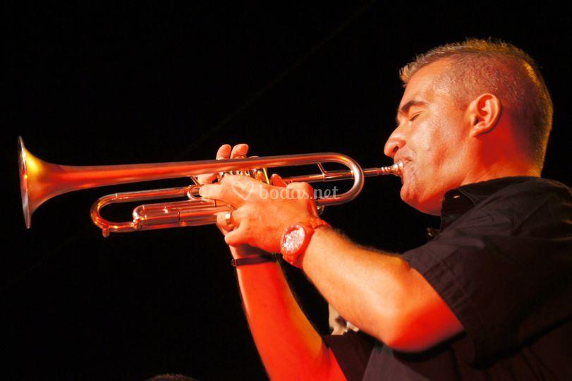 JWD Trumpet