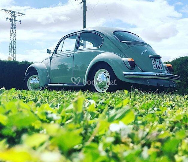 Vw escarabajo 1968