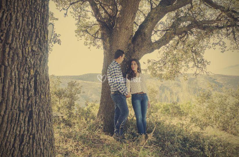 Preboda en el árbol