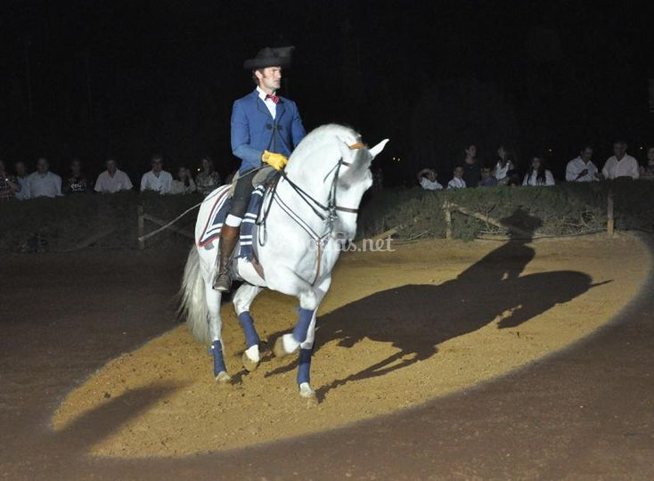 Jinete con su caballo