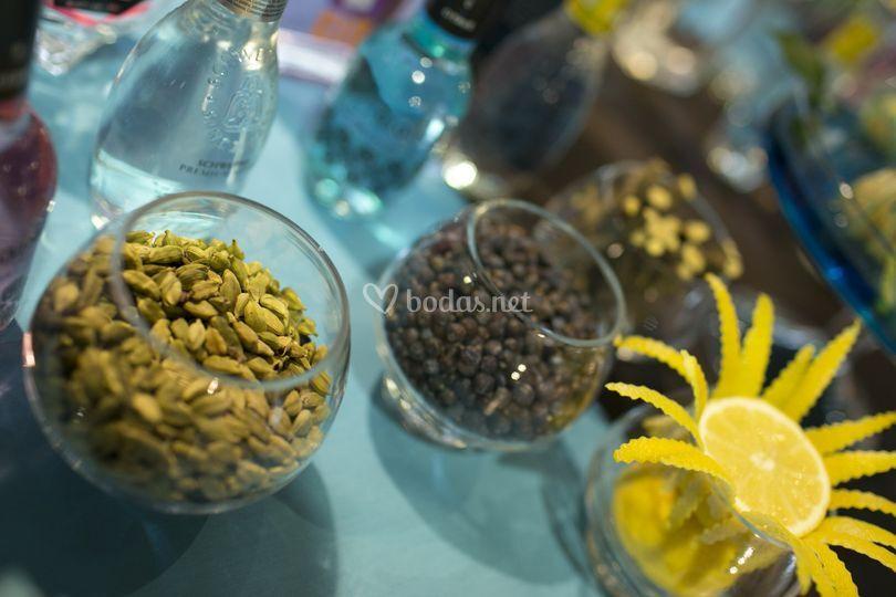 Botánicos para gins