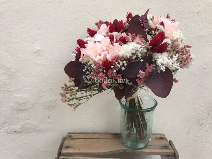 Flors la Ginesta