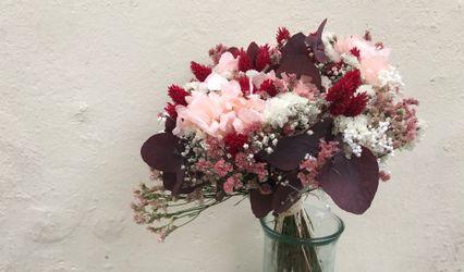 Flors la Ginesta 1