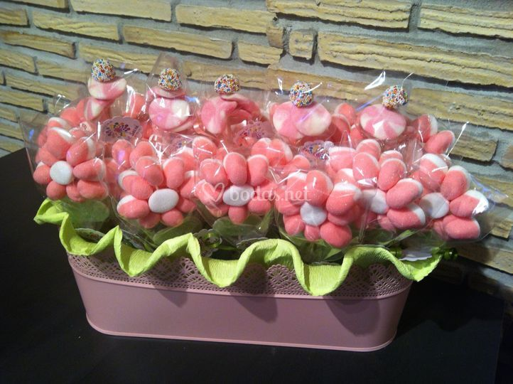 Maceta de margaritas rosas
