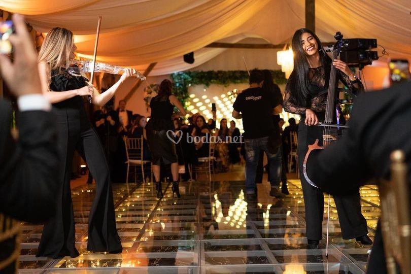 Four strings bodas