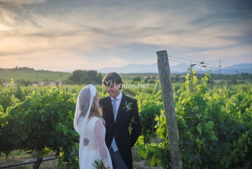 Fotos entre viñedos