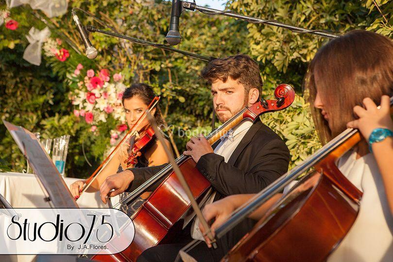 Violín y cello