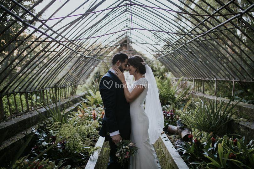 Novios abrazo Jardín Botánico