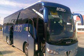 Bus Lobo