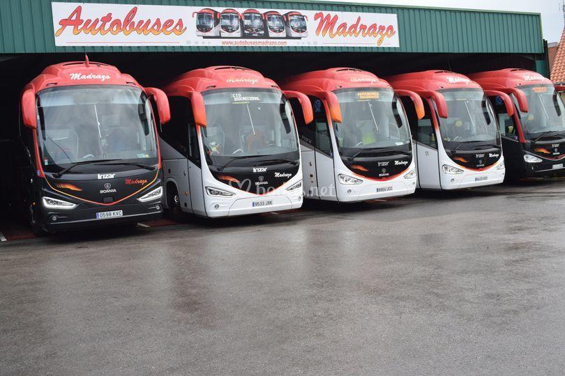 Algunos de los buses