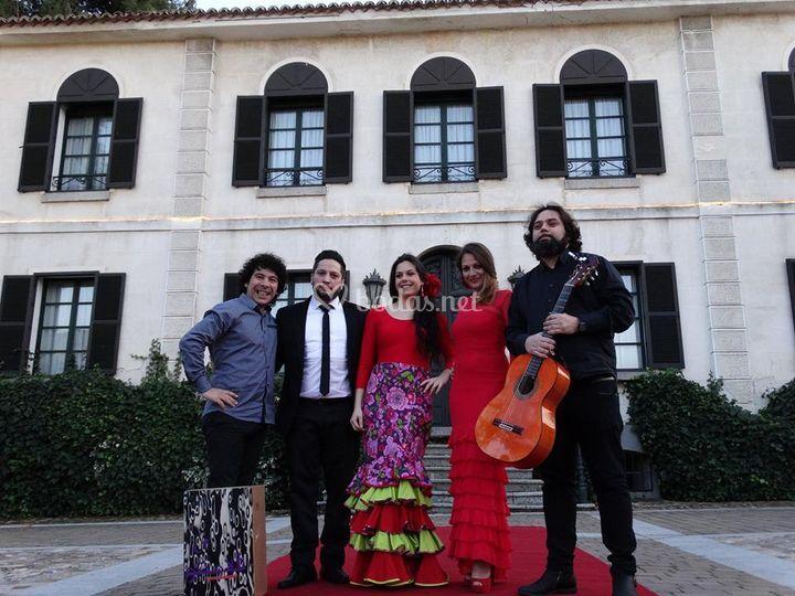 Grupos Flamencos y Coros Rocieros