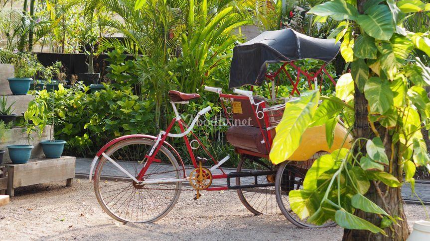 Bali, paraíso de los dioses