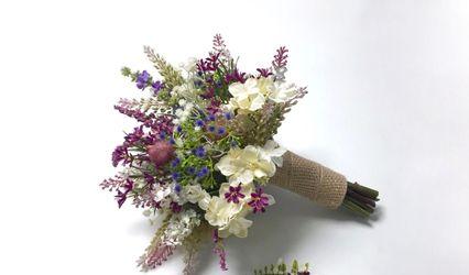 Dianthus Rosa Planellas