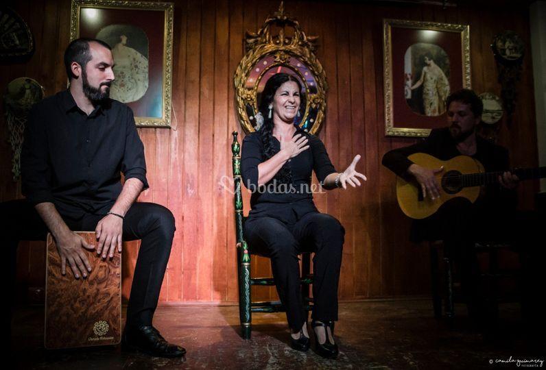 Recitales de cante flamenco