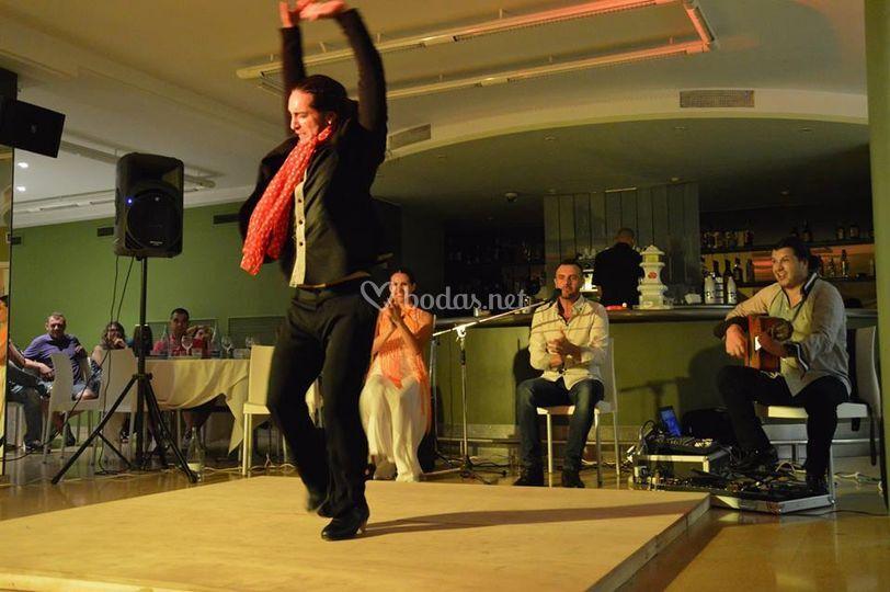 Cuadro flamenco 2