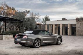 ACBV - Mustang