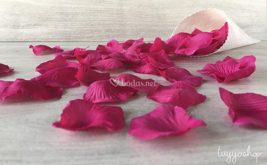Pétalos de rosa en fucsia