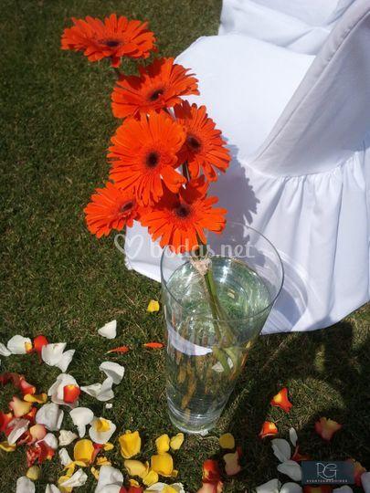 Decoración pasillo boda