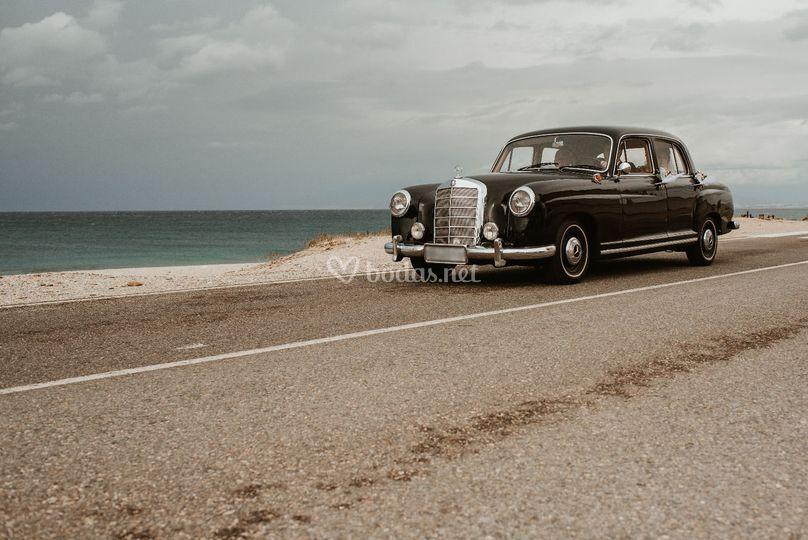 Mercedes Benz Pontón del 1951