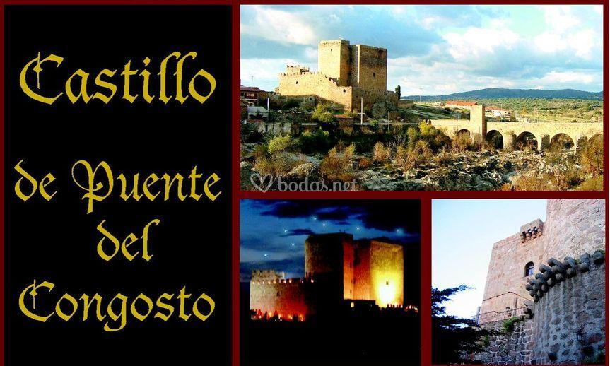 Castillo Puente del Congosto