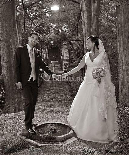 Fotógrafo de boda pareja