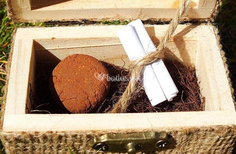 Arcilla, semillas y pergamino
