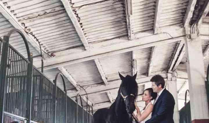Alquiler de caballo para fotos