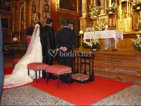 Servicio de alfombras rojas