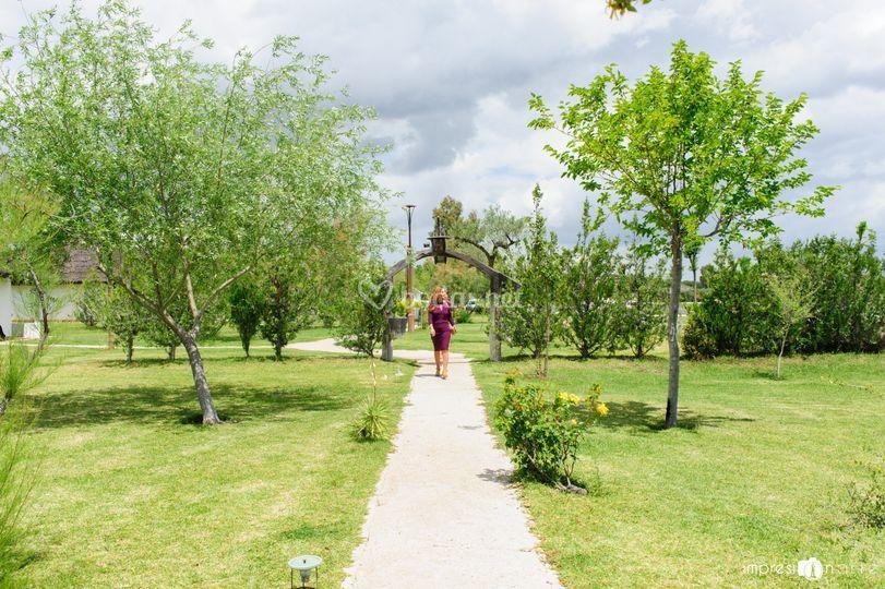 Amplios espacios verdes
