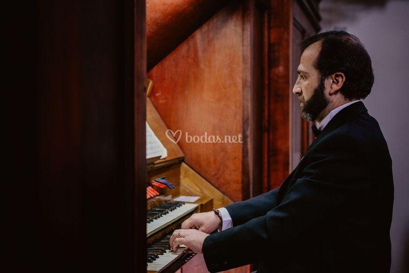 Organista Catedral Albacete